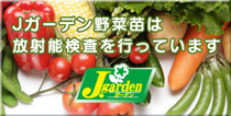 Jガーデン野菜苗の放射能検査について