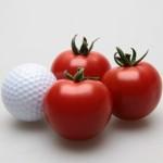 スィートトマト