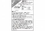 4_3melon_recipe