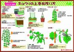 howtogrow_cucumber_planter