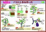 howtogrow_eggplant_planter