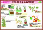 howtogrow_minitomato_planter