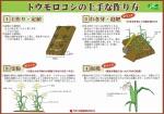 corn_tukurikata_01