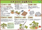 ichigo_tukurikata_01