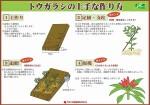 tougarashi_tukurikata_01