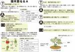 野菜接木苗Q&A_140917OL