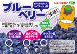 ブルーベリー3種(ぐんまちゃん)