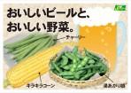 野菜タネ実写版A4POP※チャーリー_160722OL
