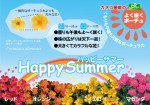 happysummer_POP_01