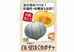 POP_shiroiamahokukabocha