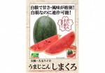 A4POP_simakuro