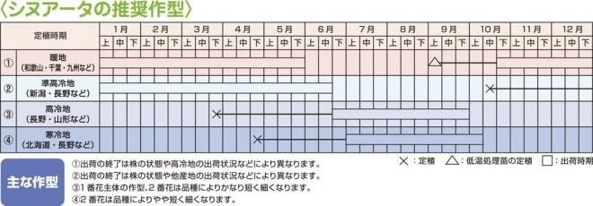 作型表 シヌアータ
